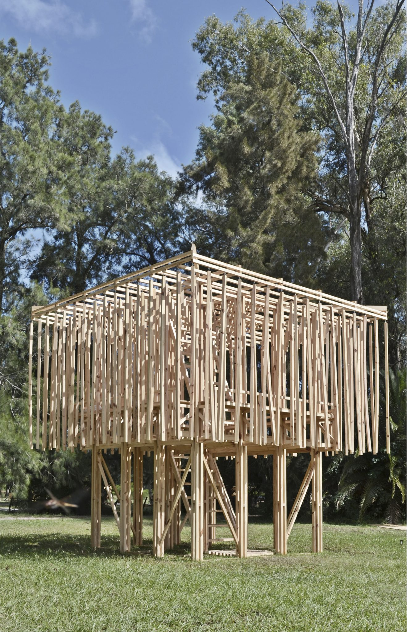 proyecto construido Hojarasca